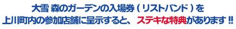 大雪森のガーデンの入場券を上川町内の参加店舗に呈示すると、割引などステキな特典をご用意。この機会にぜひ上川町内にもお越しください。